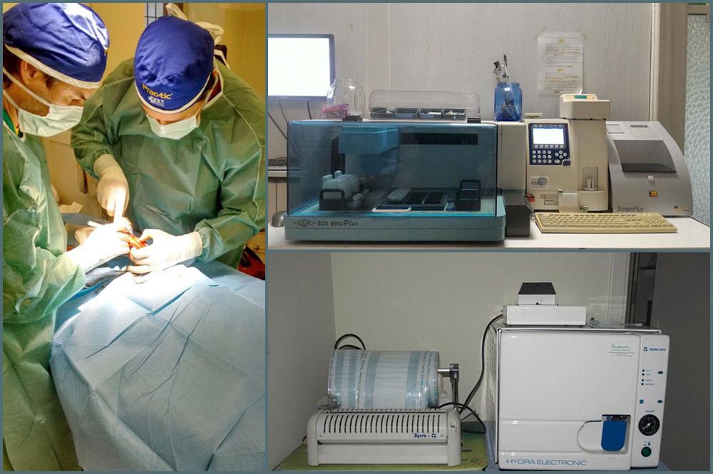 Centro Veterinario San Giorgio - Chirurgia e strumentazione